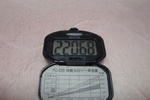 100424-050万歩計(縮小)