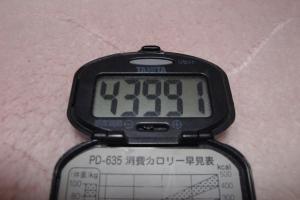 100425-050万歩計(縮小)