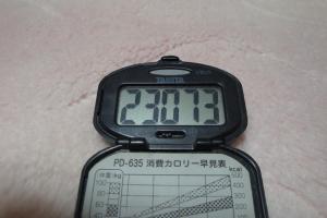 100429-050万歩計(縮小)