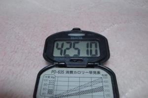 100502-060万歩計(縮小)