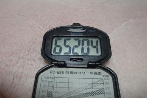 100503-050万歩計(縮小)