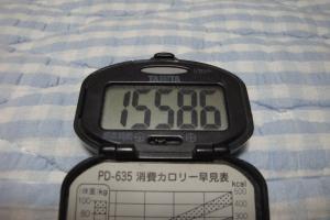 100505-060万歩計(縮小)