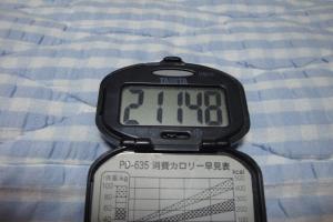 100508-060万歩計(縮小)