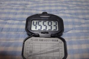 100509-050万歩計(縮小)