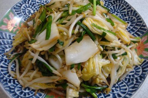 100522-030野菜炒め(縮小)