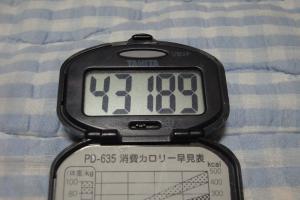 100523-070万歩計(縮小)