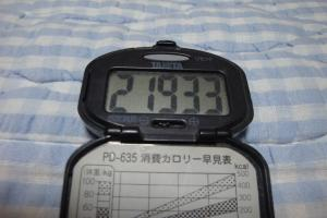 100529-060万歩計(縮小)