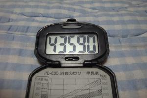100530-040万歩計(縮小)