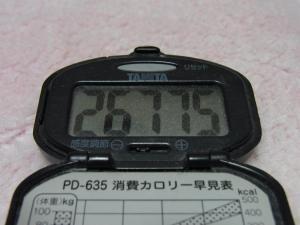110416-015万歩計(縮小)