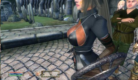 Oblivion 2010-04-17 12-48-52-22