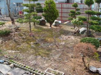 0501-niwa1.jpg