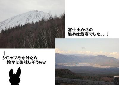 a_20091212235353.jpg