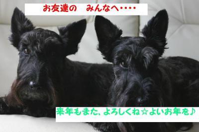 a_20091229224502.jpg