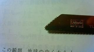 200911052329000.jpg