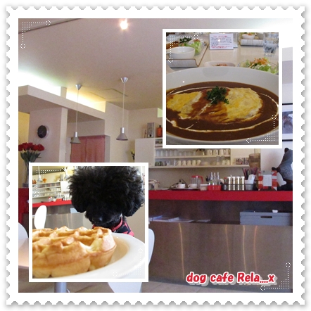 100207dog cafe Rela...