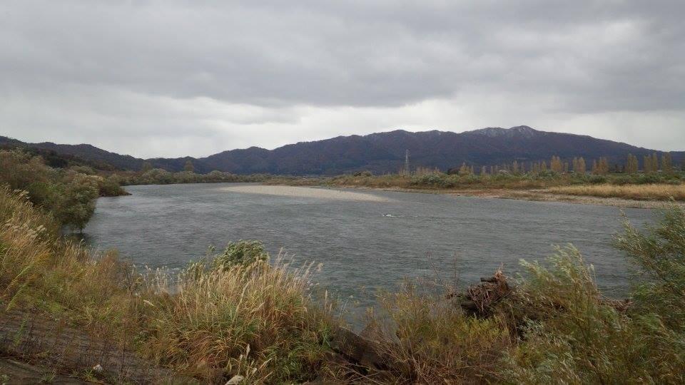 荒川鮭釣り 11月11日 新潟村上 鮭の日