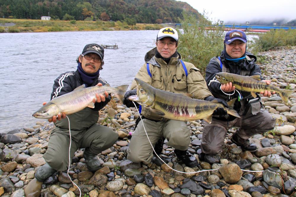 荒川鮭釣り 11月13日(水) 村上市