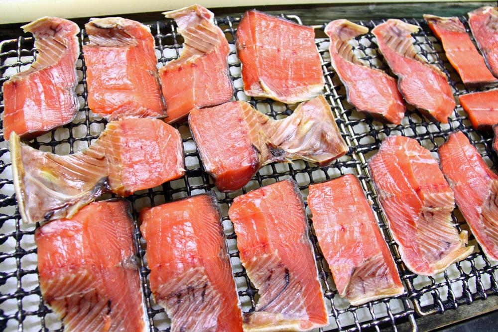 新潟県村上市 鮭釣り 塩引き鮭