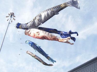 鯉のぼり 季節物 空 屋根 イメージ