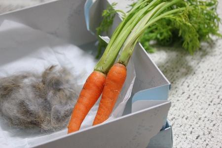 carrotfur.jpg
