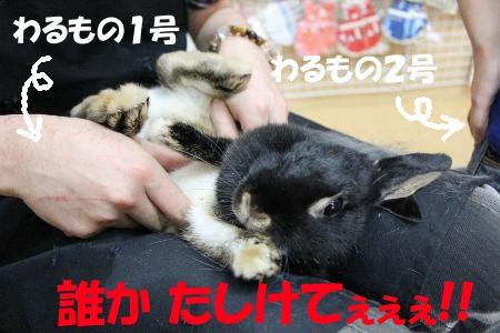 dareka_20110715185753.jpg