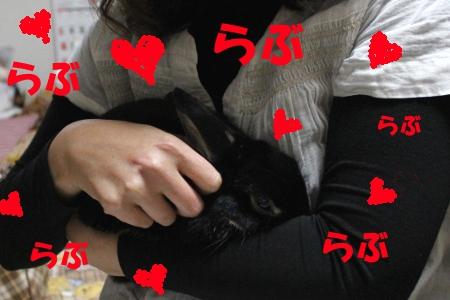 heart_20110414135006.jpg