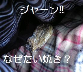 091202_0062.jpg