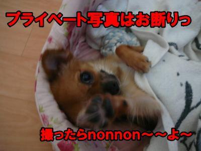 写真お断り(^_^;)