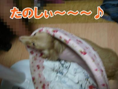 ベッド潰れる~