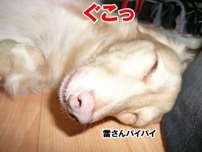 可愛い寝顔希望!!
