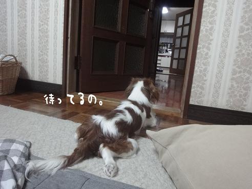 001_20100210224921.jpg