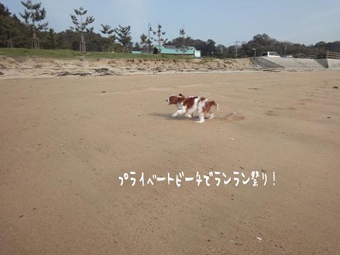 001_20100320222652.jpg