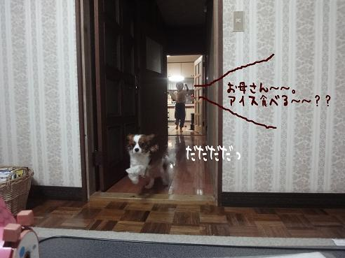 001_20100421224356.jpg