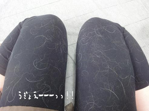 001_20100612151204.jpg