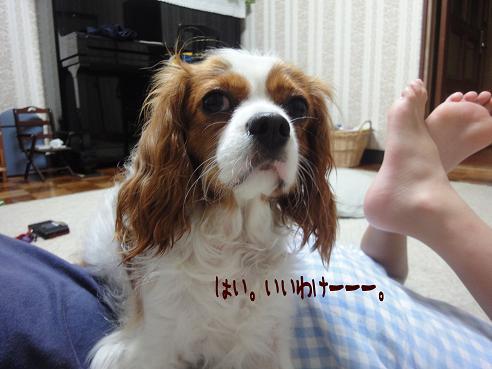 003_20100719222751.jpg