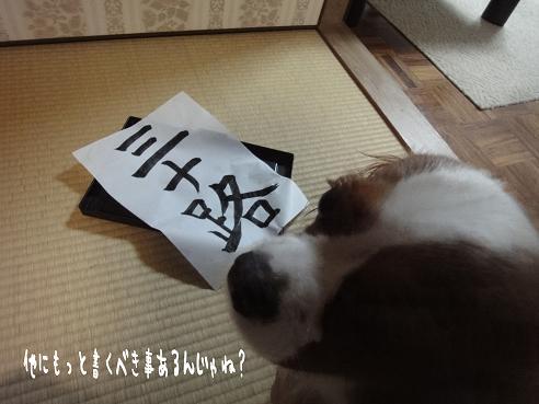 003_20100729231106.jpg