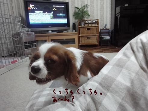 004_20100129223500.jpg