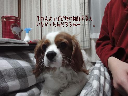 004_20100330230805.jpg