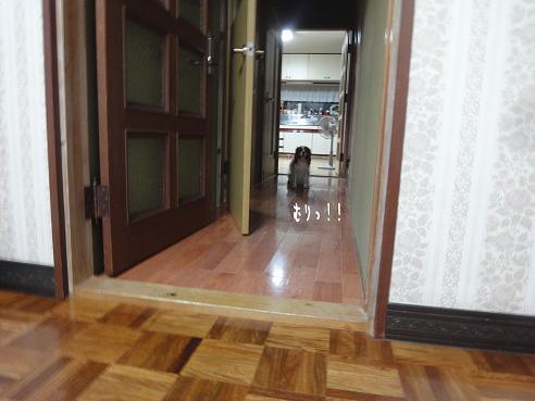 007_20100912213300.jpg