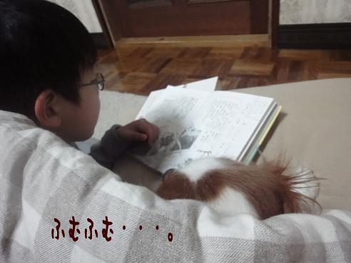 009_20100124220322.jpg