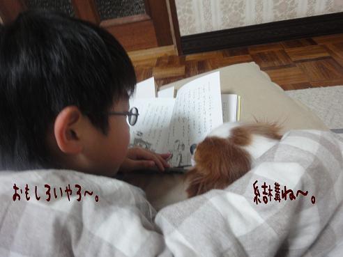 012_20100124220321.jpg