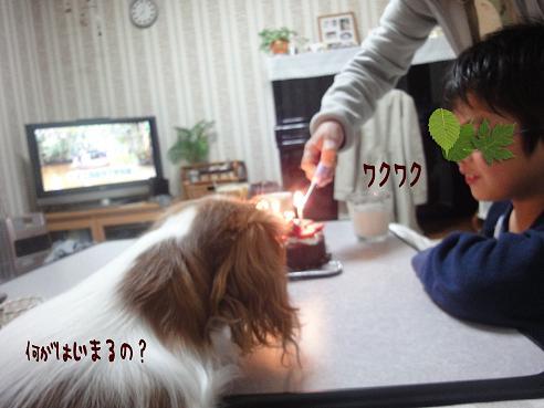 022_20100124220340.jpg