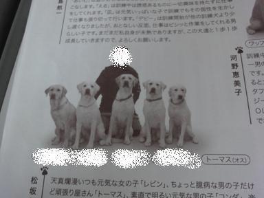 コピー ~ DSC03683