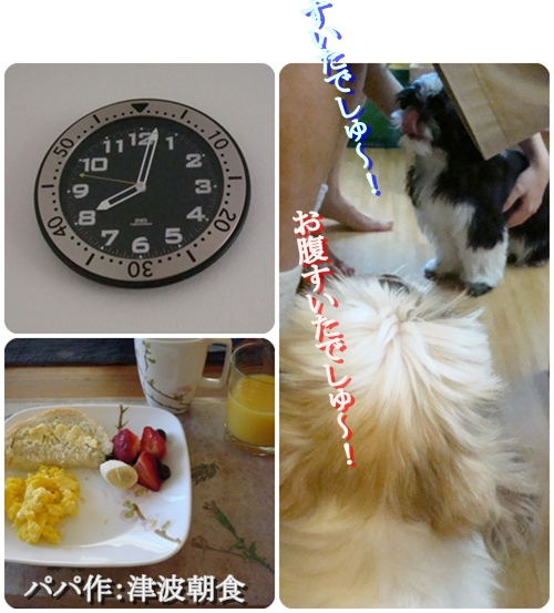 pageDSC05957x3moji.jpg