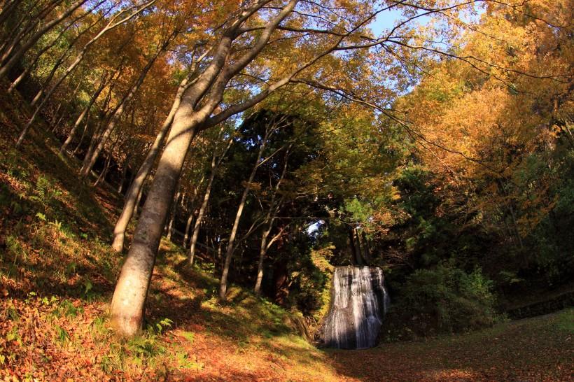 大滝山自然公園1