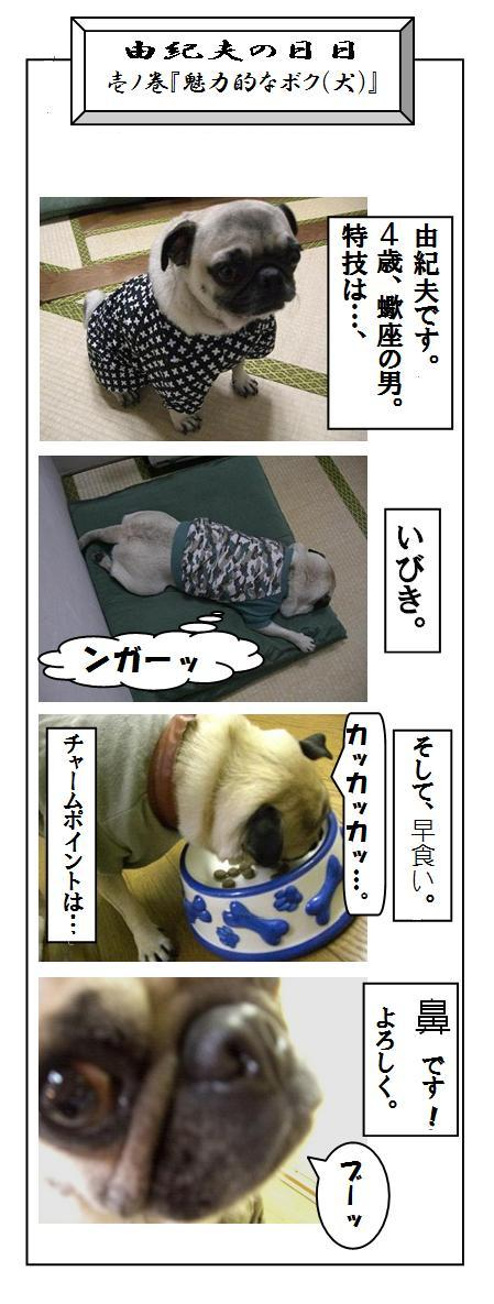 yu-hibi07.jpg