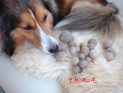 MoMoの分身毛玉ちゃん
