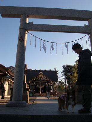 初散歩は神社へ