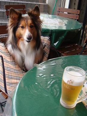 喉かわいたらビールね