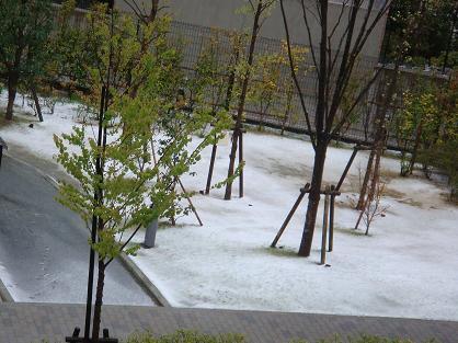 うっすら雪景色2